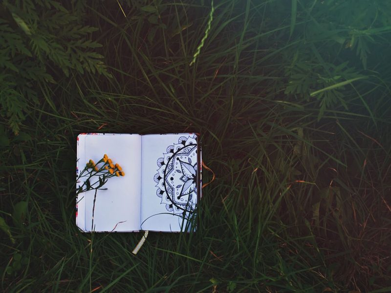Mindful Drawing Retreat at Hawkwood
