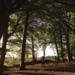 20-163 Nature Facilitation Training Hawkwood College