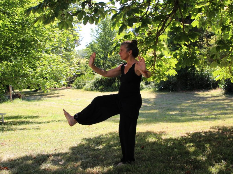 Tai Chi Movement for Resilience 2