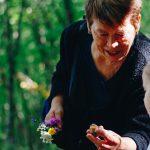 Sageing International Awakening the Sage Within