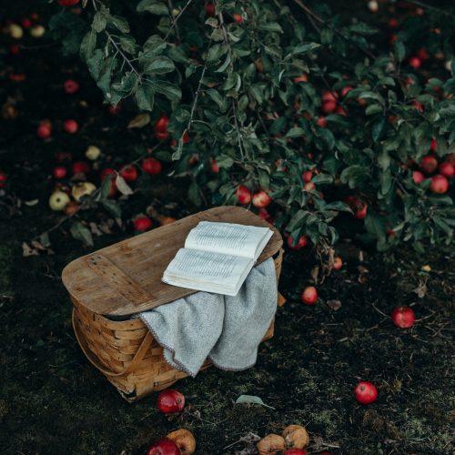 21-444 - Writing the Wild Season - Helen Moore